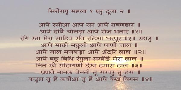 apay rsea hindi.jpg